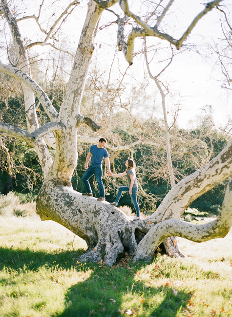 tree-engagement-photos-joel-serrato